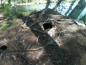 A beaver dam by a lake